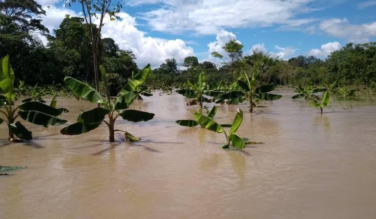 Inundación en el Meta