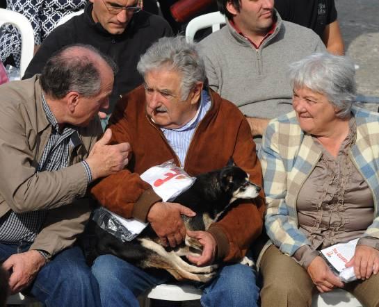 Murió Manuela, la fiel perra de Pepe Mujica y Lucía Topolansky