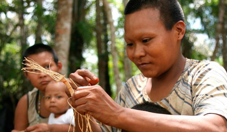 Protección estatal a indígenas: Piden agilizar decreto para protección de pueblos indígenas en aislamiento