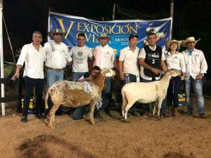 Campeones de las razas cebuinas