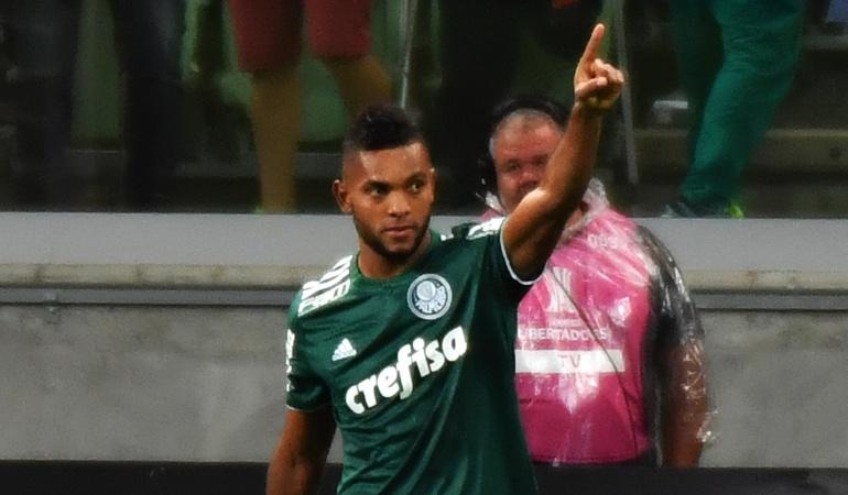Borja lesión Palmeiras Selección Colombia: Borja será operado en Brasil por lesión de meniscos en su rodilla derecha