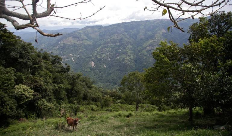 Restitución de tierras: Luz verde a reforma rural integral