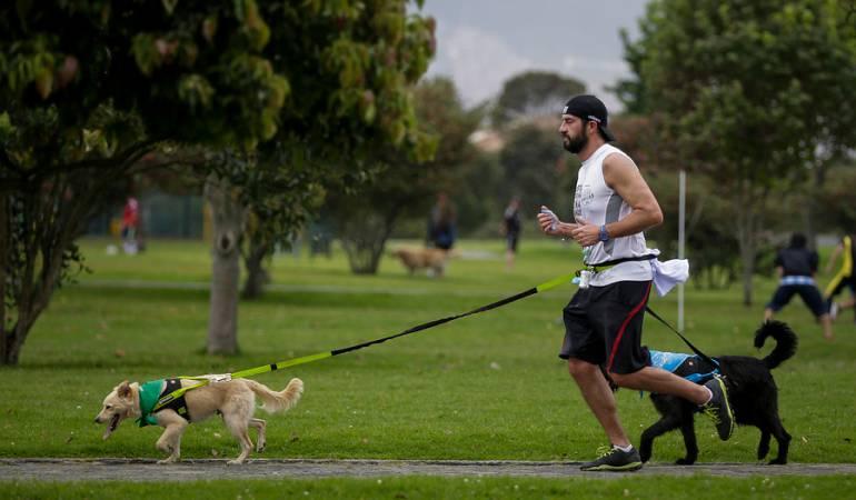 Festival para mascotass: Centro Canino de la Cruz Roja realizará festival dedicado a mascotas