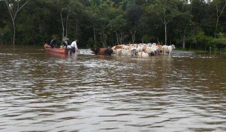 Emergencia invernal en Guainia: Más de 15.000 afectados por las lluvias en Guainía
