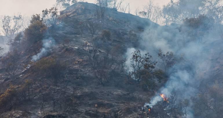 Emergencia ambiental en Melgar y Carmen de Apicalá: Incendio forestal entre Melgar y Carmen de Apicalá afecta 200 hectáreas