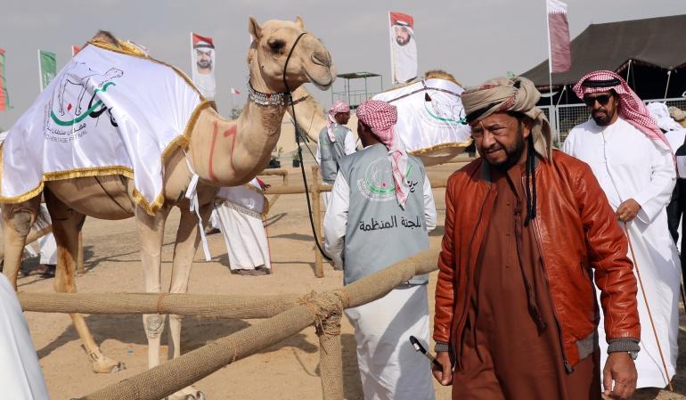 Jeques árabes