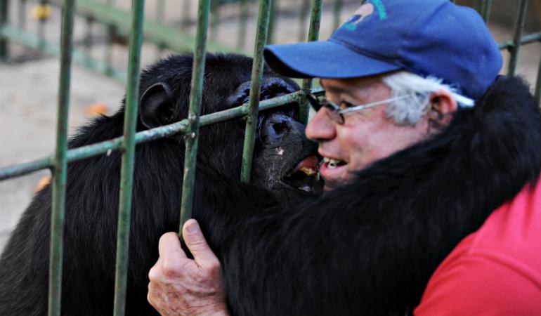 Zoológico con crisis en NIcaragua: Cientos de perros corren en Nicaragua para apoyar a zoológico ante crisis