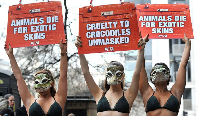 Desfiles sin pieles de animales: London Fashion Week estará libre de pieles de animales