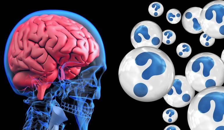 Avance para retrasar Alzheimer.: Nueva App ayudaría a retrasar el avance del Alzheimer
