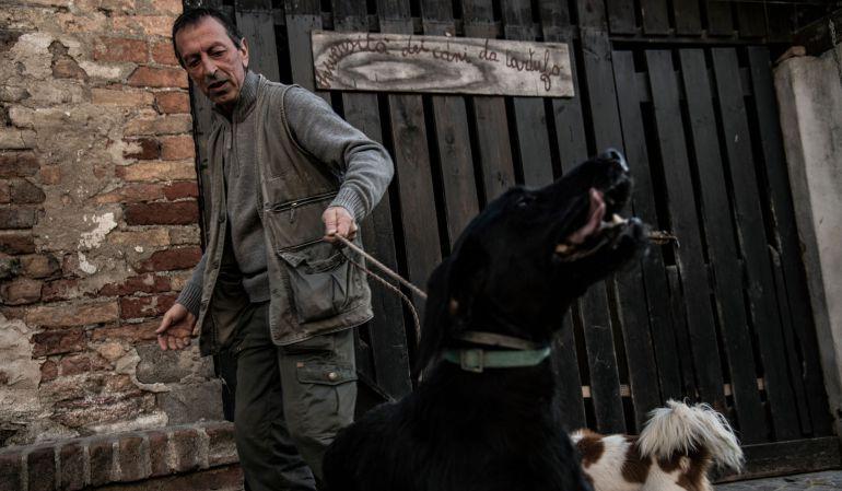 ¡Insólito! ciudad prohíbe pasear perros en espacios públicos