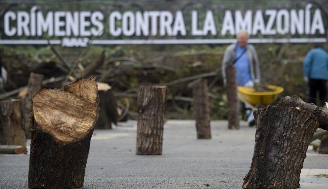 Carrera Contra la Deforestación San José de Guaviare: Este domingo será la primera Carrera Contra la Deforestación