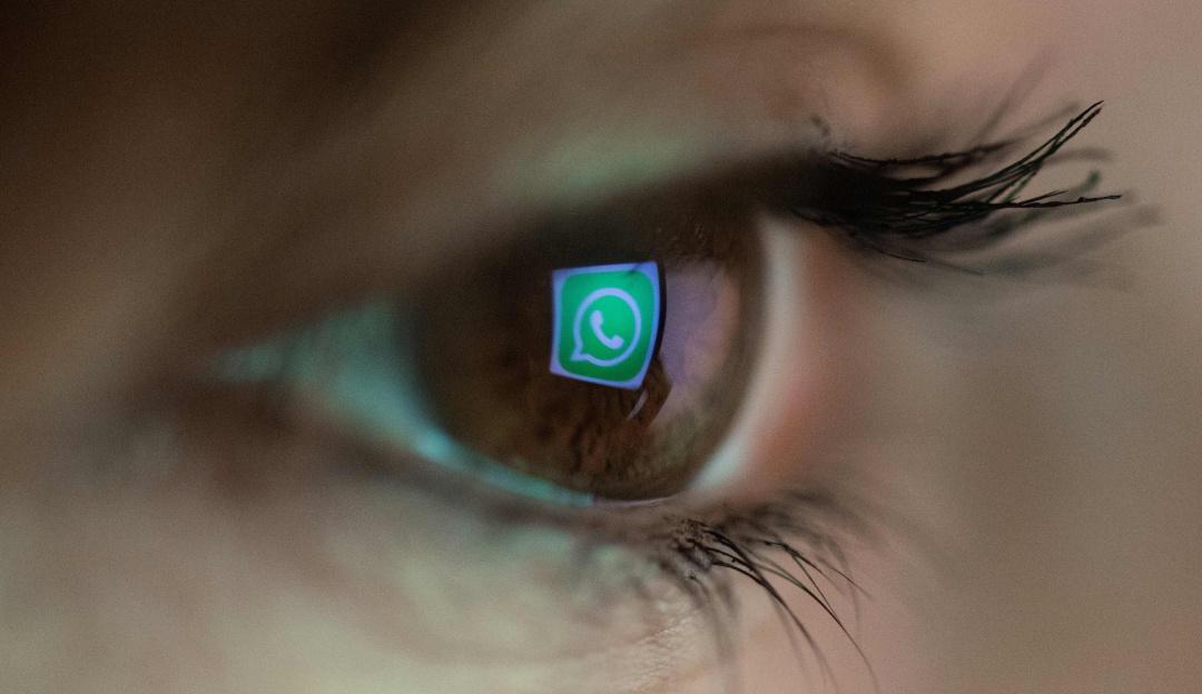 Traducir mensajes en WhatsApp: Así puede traducir sus mensajes en WhatsApp