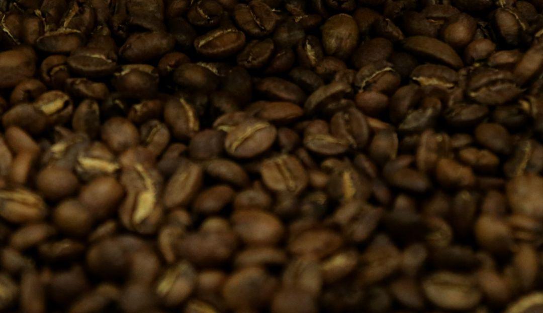 crisis económica café.: Congreso cafetero evalúa crisis económica de los productores del grano