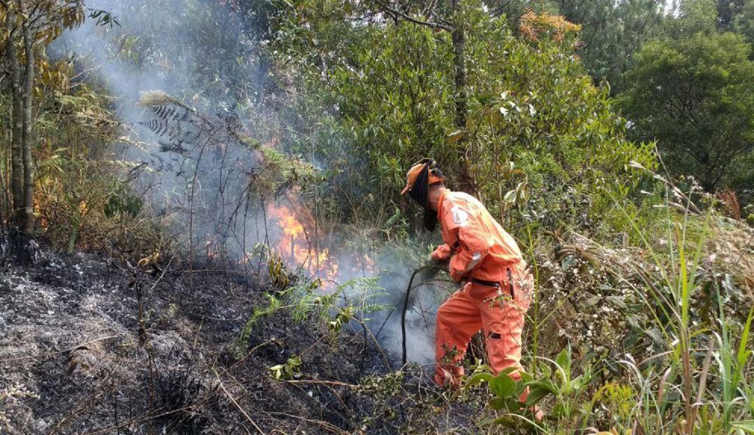 ANTIOQUIA, ALERTA, ROJA, INCENDIOS, DAPARD, EMERGENCIAS: 17 municipios están en alerta roja por posibles incendios forestales