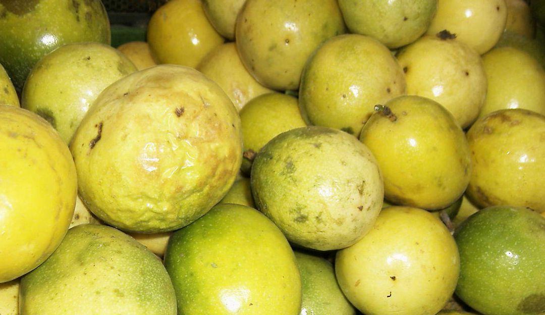 Maracujá o Maracuyá: Maracuyá, una fruta que apasiona