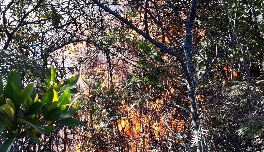 Incendio forestal en Soacha: Bomberos tratan de controlar incendio forestal en Soacha