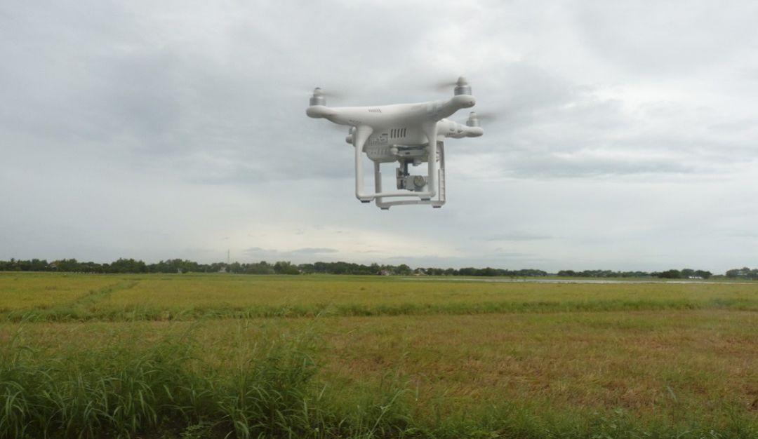 Tecnología digital para el campo: El agro, cada vez más de la mano con el mundo digital