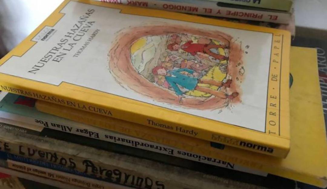 Biblioteca campesina: Recolectan libros para niños campesinos en Cómbita