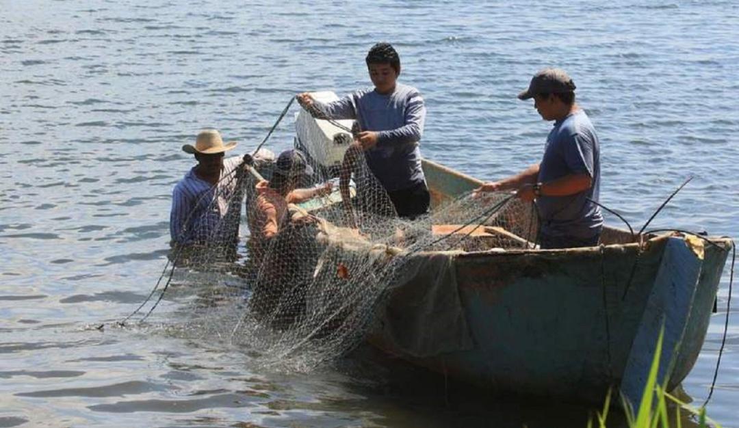 Pesca en Colombia: La pesca artesanal está en crisis en el Pacífico