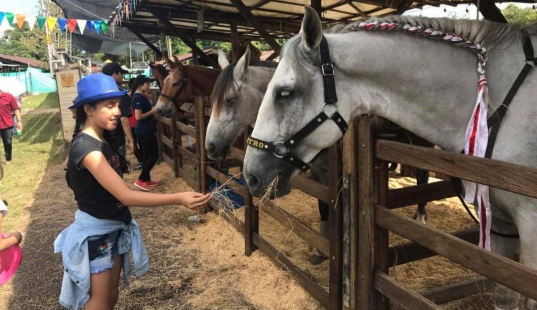 #ExpoMalocas2019 Villavicencio: Así va Expomalocas 2019, la gran feria agroindustrial de los Llanos