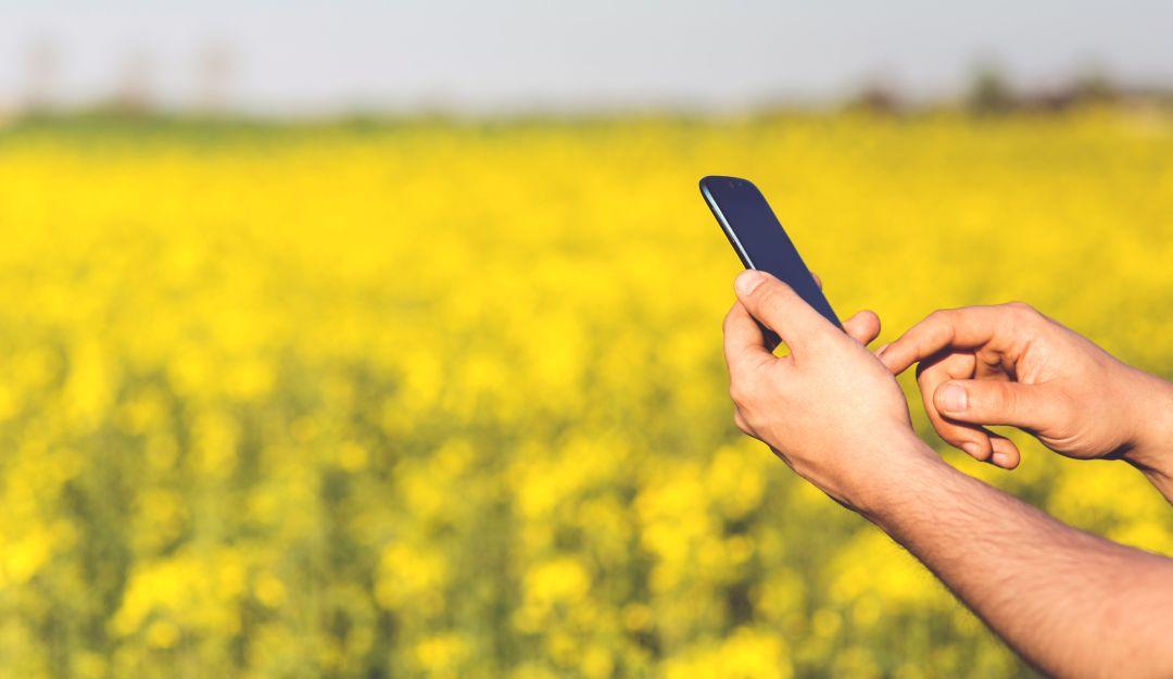 Agro encuesta: Crece la confianza de los agricultores colombianos