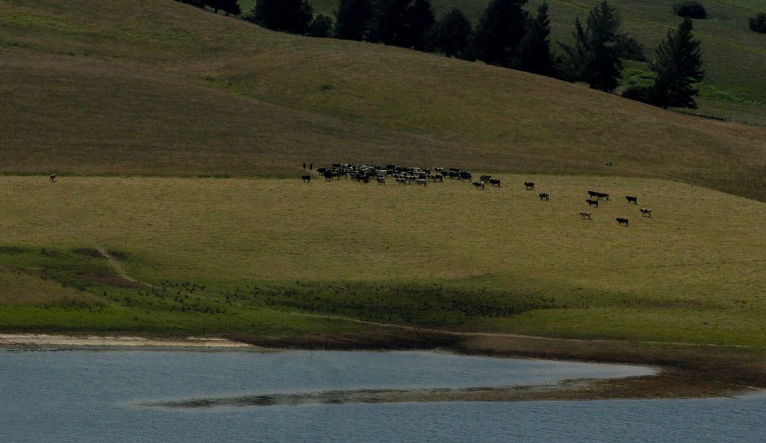 Foto de archivo del embalse de Sisga en la temporada seca de 2015.