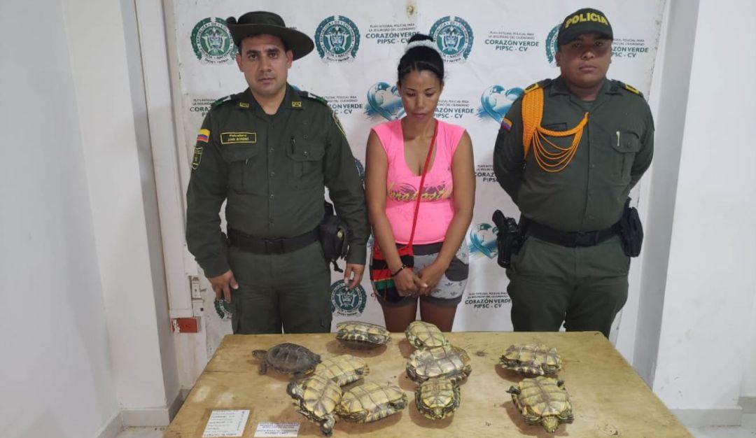 Capturados delitos ambientales departamento de Bolívar: En el 2019 Bolívar registra 33 capturados por delitos ambientales