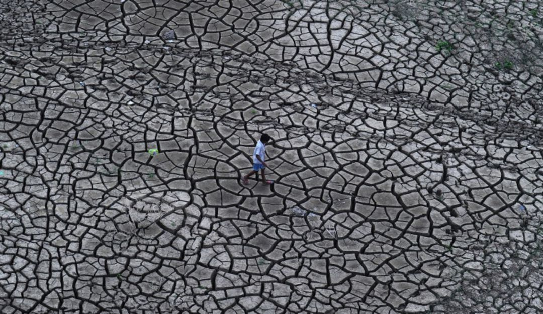 ¿Por qué la urgencia de tomar acciones frente al cambio climático?