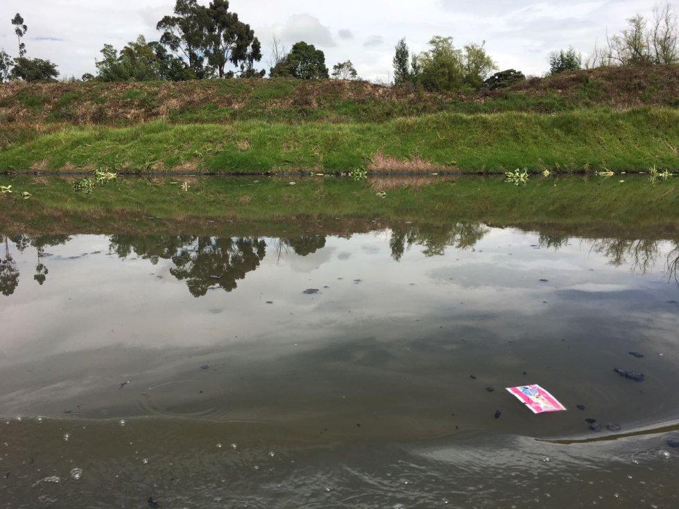 Sin embargo, a pesar de los grandes avances por parte de la CAR y de los municipios, ahora la principal amenaza del río son los particulares, en especial las fincas de ganados.