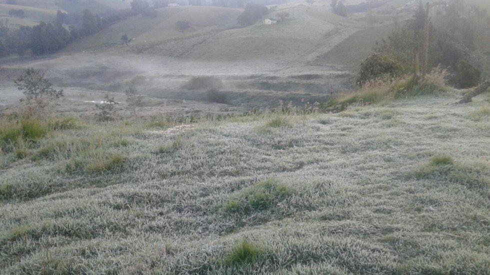 El impacto del fenómeno meteorológico está en el alto costo que se genera en los alimentos, sumado a las miles de hectáreas de cultivos y pastos destruidos.