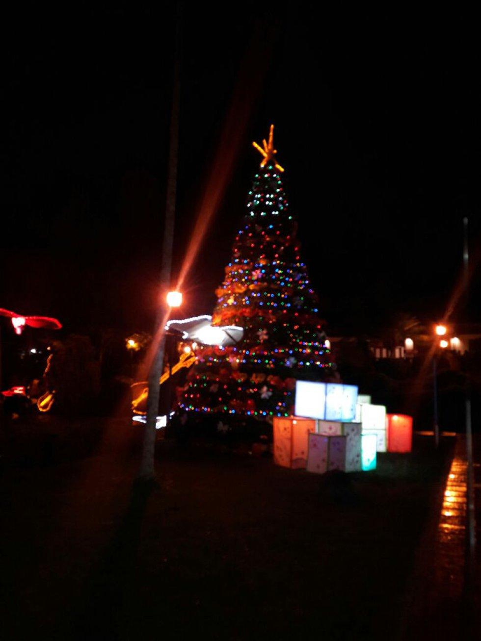 El arbolito de navidad no podía faltar en el alumbrado del parque del café