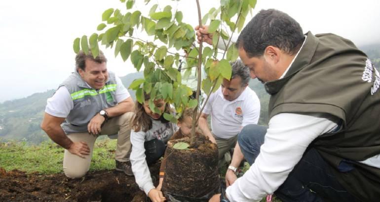 Siembran, árbol, 500, mil Valle, Aburrá: Siembran el árbol 500 mil en el  Valle de Aburrá | Medellín | Caracol Radio