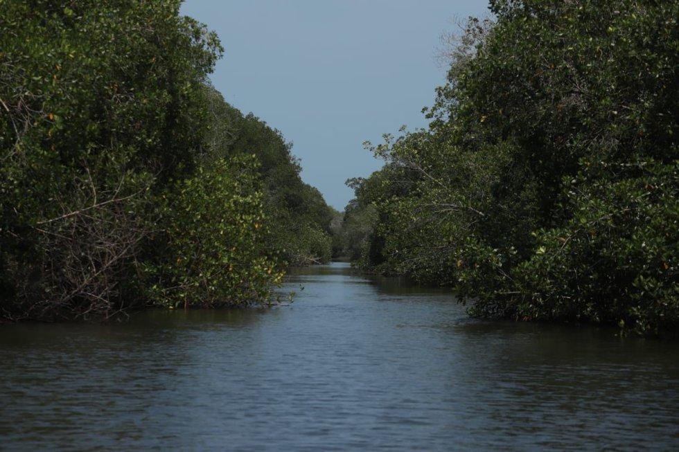 Viaje al Corazón del Caribe: San antero, un municipio ecoturista
