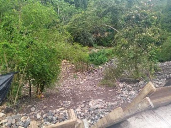 RUTA DEL CACAO AFECTACIONES QUEBRADAS NACIMIENTOS: VIDEO: Se secaron tres quebradas por obras de la Ruta del Cacao
