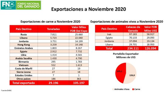 Comercio ganadero: Colombia incrementó sus exportaciones de carne y semovientes en 2020