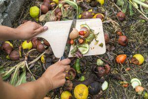 Compostaje. Reutilizar los desperdicios de alimentos para abono.