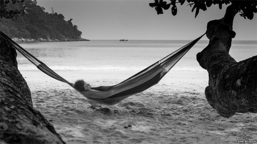 A primera hora de la mañana, Jan Anderson captó esta imagen de un flamenco costarricense en el momento de despertarse.