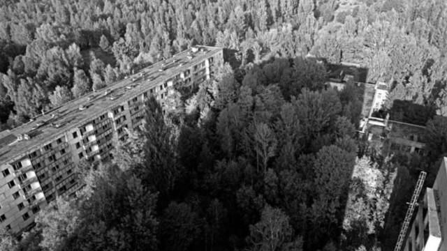 Las impactantes imágenes de la zona de exclusión de Chernóbil 30 años después del desastre nuclear