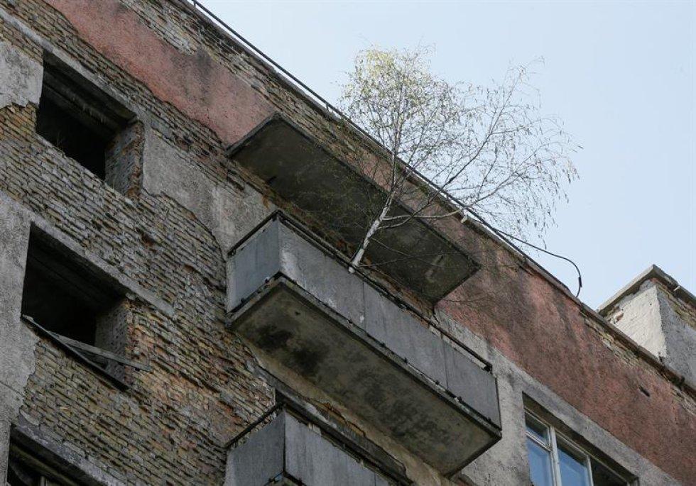 La zona de exclusión es una zona abandonada en inmediaciones de la planta que sufrió el accidente nuclear.