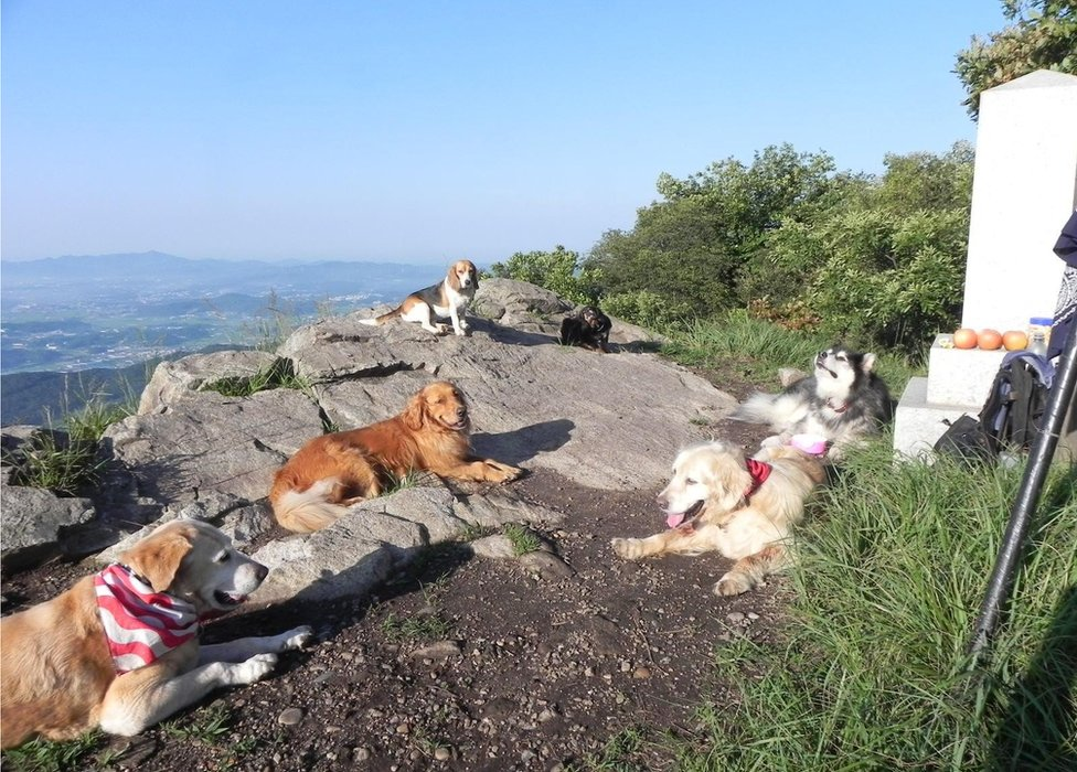 """""""Cuando leí un guión de Claudia Hammond sobre las claves de descansar me di cuenta que eso era para mí subir las montañas del norte de Seul, Corea del Sur, cerca de mi casa"""", dice Dan Silvia."""