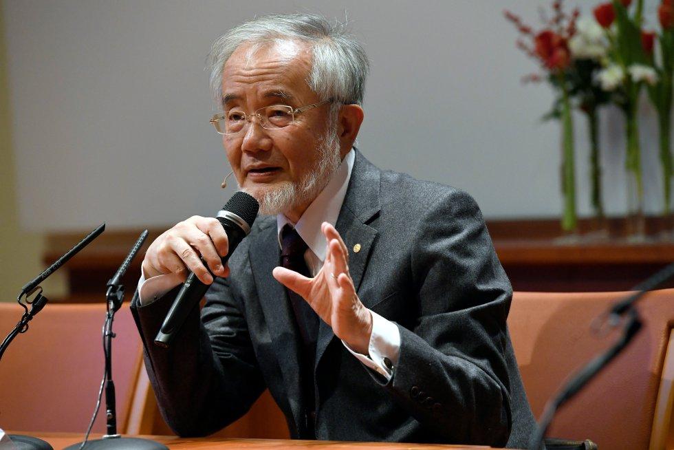 Yoshinori Ohsumi, Nobel de Medicina otorgado por su estudio de los mecanismos subyacentes a la autofagia, una 'autoalimentación' celular.
