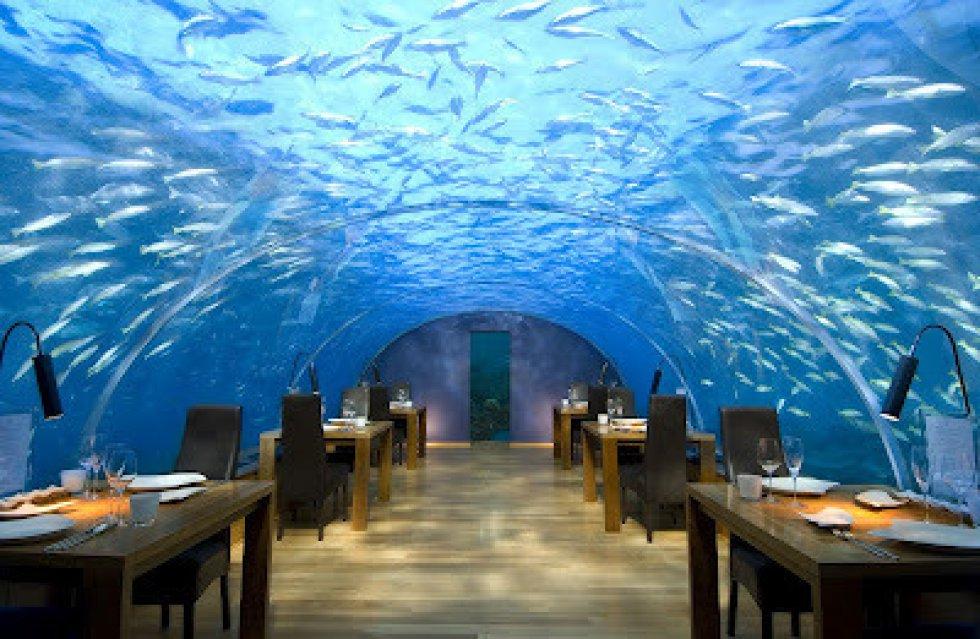 Ithaa Undersea Restaurant, ubicado en Rangali, Maldivas, este esta debajo del mar.
