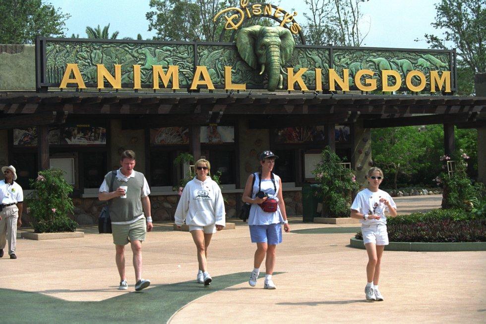 Disney's Animal Kingdom es un parque temático de animales localizado en Walt Disney World Resort(Orlando,EE.UU.) Se inauguró en abril de 1998.