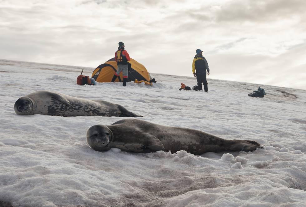 El deseo de convertirse en los primeros en lograr unir las distintas islas del archipiélago con kayak y el anhelo por contemplar la belleza de esos remotos parajes motivaron al grupo de deportistas.