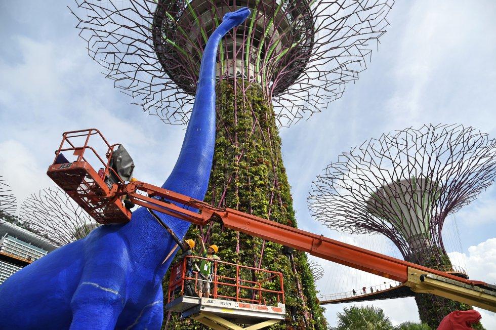 Singapur es un país insular ubicado en Asia formado por sesenta y tres islas. Tiene una población aproximada de 5 millones de personas.