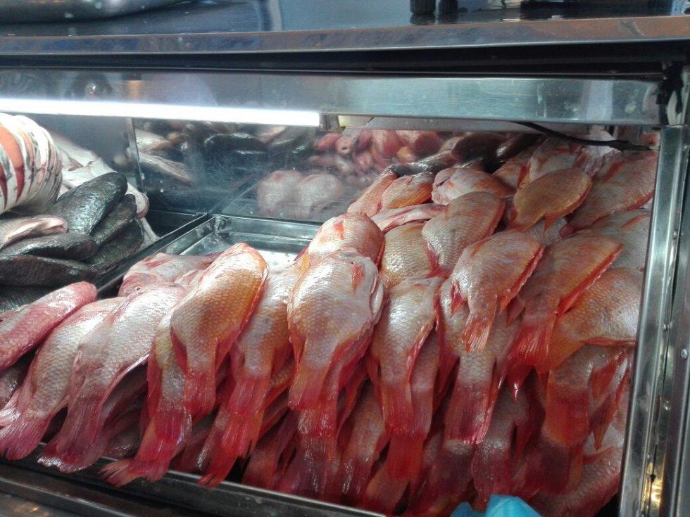 En Colombia, los principales productos pesqueros provienen de la pesca artesanal e industrial. Esta aporta al mercado atún, langosta, merluza, entre otros.