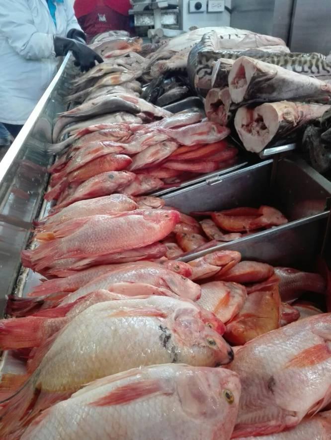 En el interior del país la gente prefiere consumir las especies de bagres, debido a su fácil preparación, mientras que la población ribereña prefiere las especies de escamas.