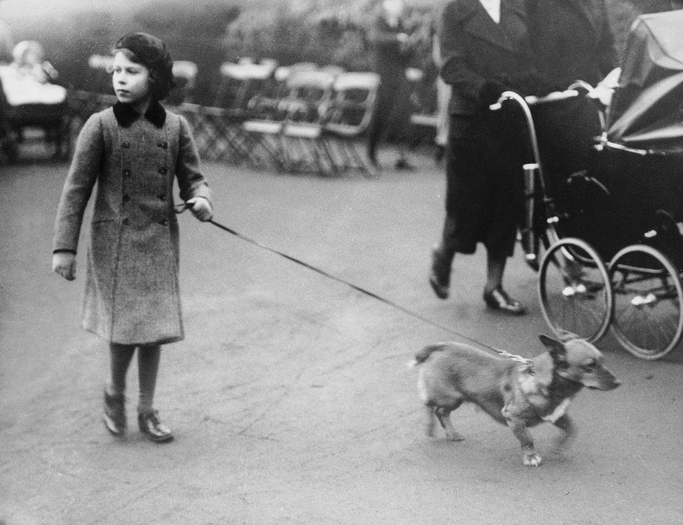 Sus perros favoritos son los de la raza corgi. La reina ha tenido más de 30, todos descendientes de Susan, la perra que le regaló su padre a los 18 años.