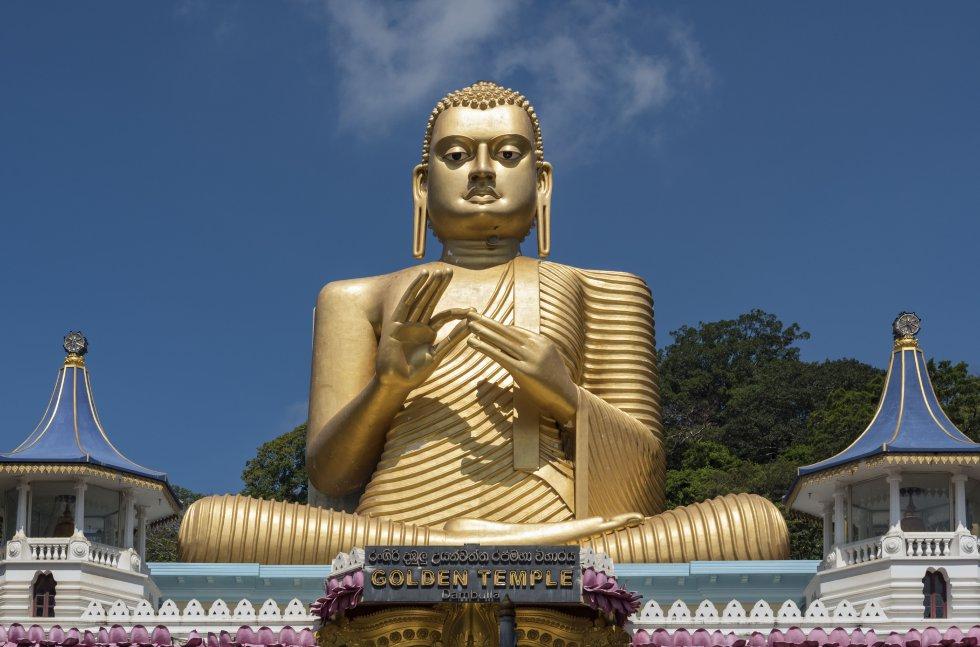El budismo representa un medio de transformación individual y social, a través del cual los individuos pueden desarrollar cualodades como la conciencia, bondad y sabiduría.
