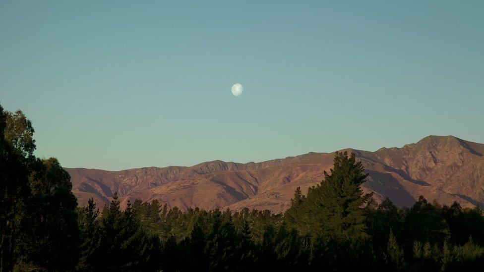 """Emily Cross: """"Tomé esta foto en unas montañas que se encuentran en Otago, una región en el sur de Nueva Zelanda. El Sol se ocultaba y proyectaba una tonalidad rosa en las colinas y los bosques del lugar. Una luna brillante empezaba a salir, convirtiéndose en el centro del paisaje. Un plácido momento que invitaba a disfrutar de la Madre Naturaleza""""."""